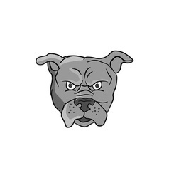 Angry Bulldog Head Cartoon vector image vector image