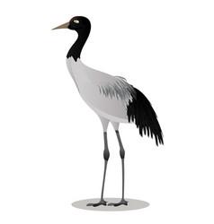 Black necked crane cartoon vector