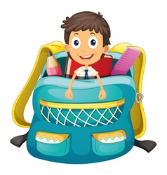 boy in bag vector image
