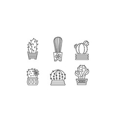 collection of cactuses succulent in pots linear vector image