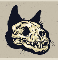 colorful cat skull concept vector image