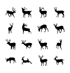 deer animal icons set vector image