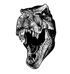 Dinosaur trex head drawing angry vector