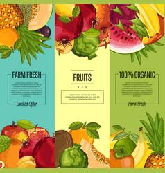 Farm fresh fruit vertical flyers set vector