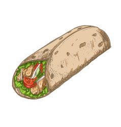 vintage burrito drawing hand drawn fast vector image
