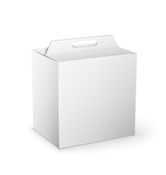 White Product Package Box Mock Up Template vector image