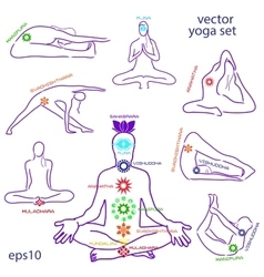 Influence of asanas for chakras vector image vector image