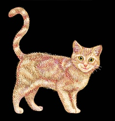 Cute and colorful cat drawing vector image