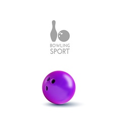 Bowling bowl isolated on the white as design vector