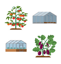 design of greenhouse and plant logo vector image