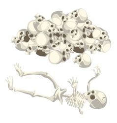 Human skeleton and pile of skulls isolated vector image