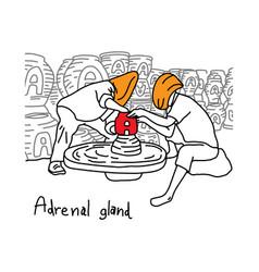 Metaphor function adrenal gland vector