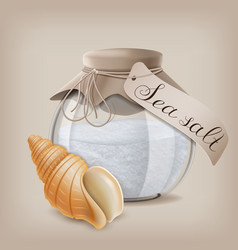 sea salt in a glass jar and seashell vector image
