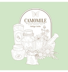 Vintage Sketch With Camomile Cosmetics vector image vector image