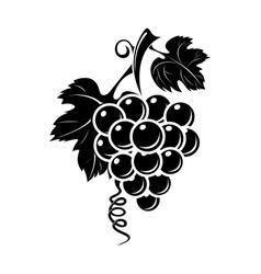 Black grapes icon vector