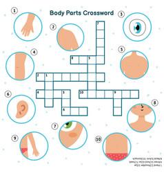 Body parts crossword with hand eye shoulder vector
