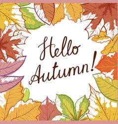 Hello autumn hand draw banner vector