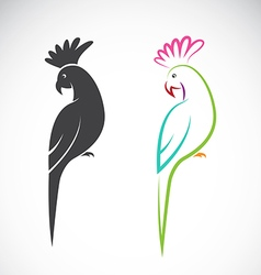image a parrot design vector image