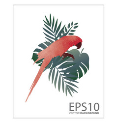 macaw bird and tropical green leaf pattern vector image