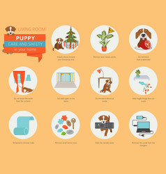 puppy care and safety in your home living room vector image