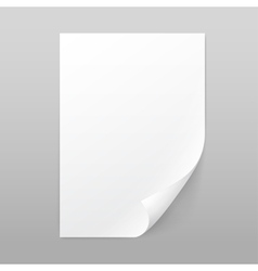White Blank Paper Page Sheet with Corner Curl vector image