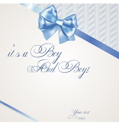 Baby boy announcement card of twins vector