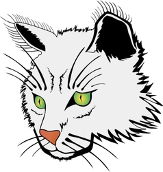 Cat face vector image