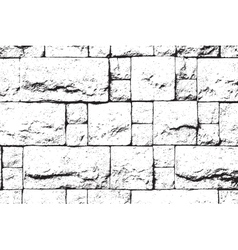Decor Brick Overlay vector image