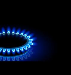 gas persective half vector image