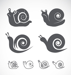 Group of a snail vector