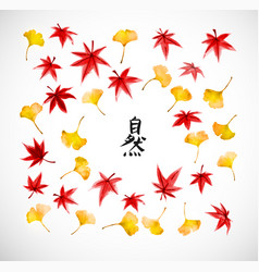 leaves gingko tree and red japanese mapl vector image