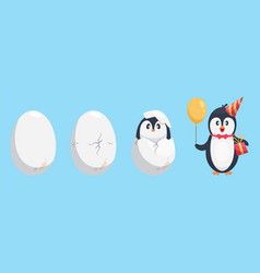 penguin egg birth stages penguin cute cartoon vector image