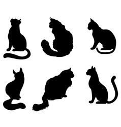 Silhouette cat set vector