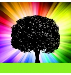 tree silhouette colorful background vector image