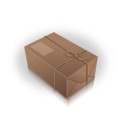 wrap box vector image