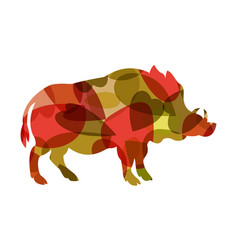 boar colourful vector image