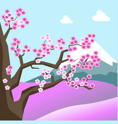 China spring landscape with sakura blossom on tree vector