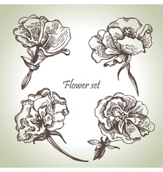 Floral set vector image