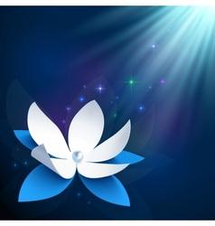 Night cosmic flower background vector image
