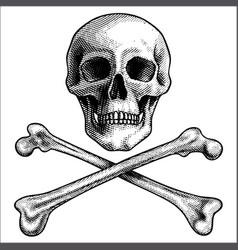 sketch hand drawn human skull and crossbones vector image