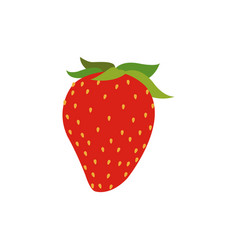 strawberry fruit fresh food nutrition vector image