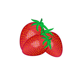 Three red strawberries with leaves isolated vector