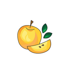yellow apple icon on a white background vector image