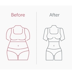 a fat and slim woman figure vector image