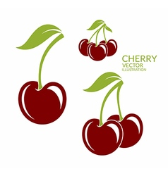 Cherry Isolated berries on white background vector
