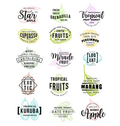 Exotic fruits farm market sketch lettering vector