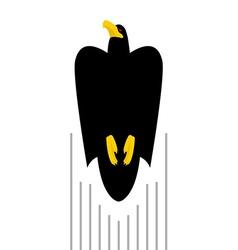 Flight of black hawk bird flies to top of predator vector