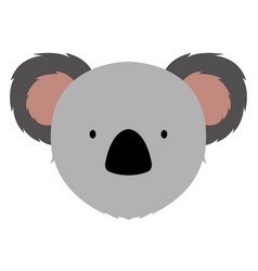 isolated cute koala avatar vector image