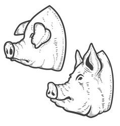 Set of pig heads isolated on white background vector