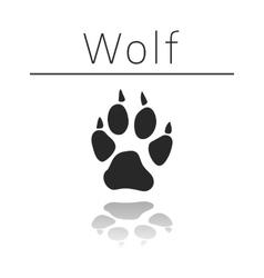Wolf animal track vector image